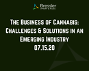 Webinar: The Business of Cannabis: Challenges & Solutions in an Emerging Industry