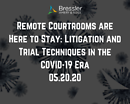 Webinar: Remote Courtrooms are Here to Stay: Litigation and Trial Techniques in the COVID-19 Era 05.20.20